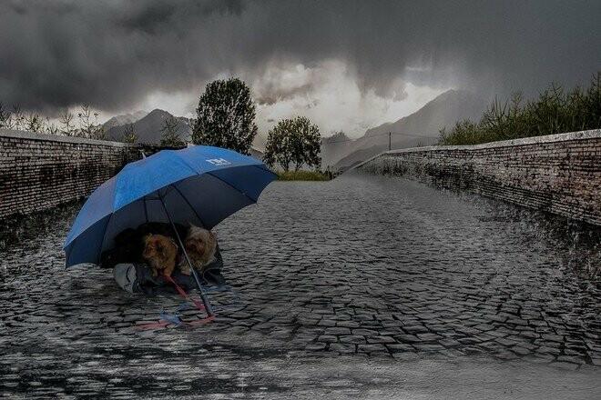 Ульяновскую область ждет резкое изменение температуры