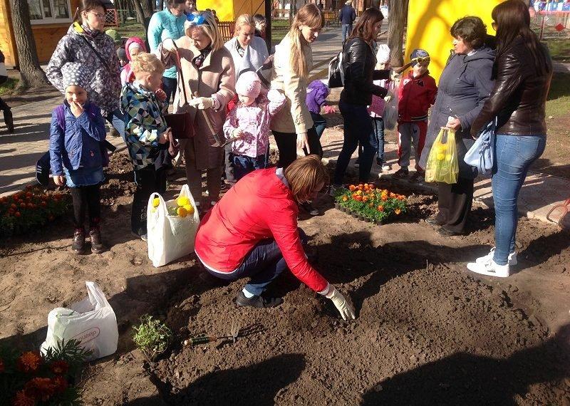 В Ульяновске в течение месячника по благоустройству посадят 2 000 деревьев и кустарников , фото-1