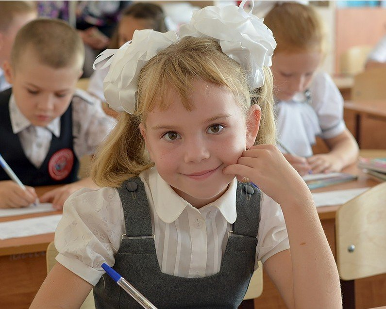 Ульяновские школы готовы к 1 сентября, фото-1