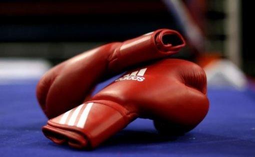 На чемпионате ПФО по боксу ульяновские спортсмены стали призерами , фото-1