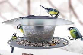 Городская экологическая акция «Помоги птицам» проходит в Ульяновске, фото-1