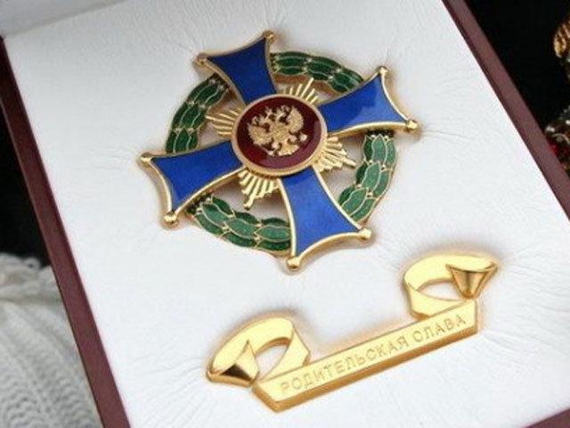 Орденом «Родительская слава» награждена многодетная семья из Ульяновской области, фото-1
