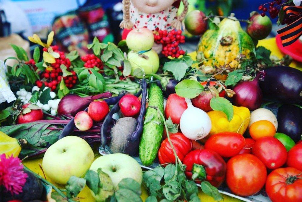 Сразу две сельскохозяйственные ярмарки пройдут в Ульяновской области в один день , фото-1