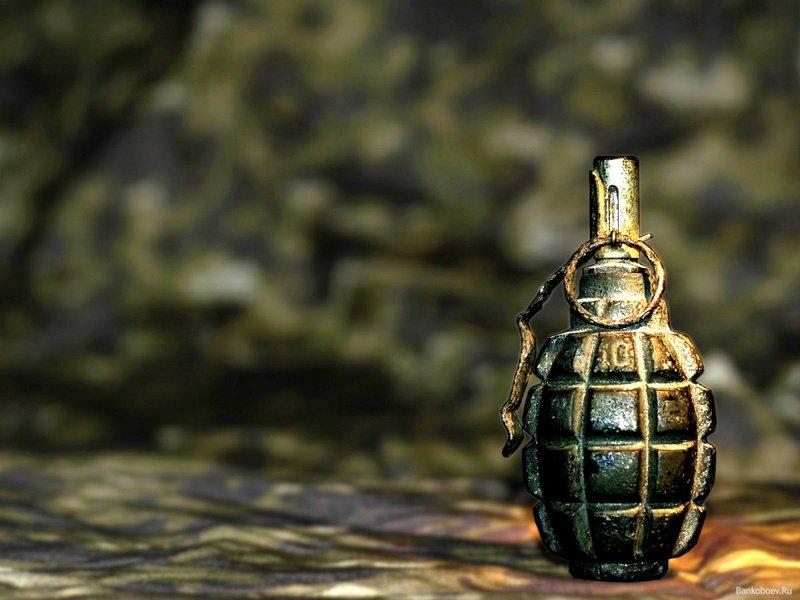 Боевую гранату нашел на даче житель Ульяновска, фото-1