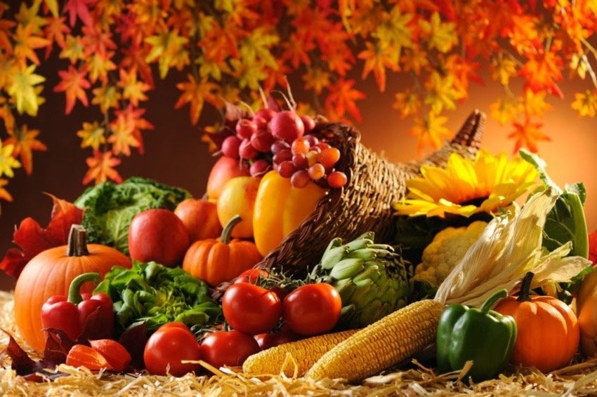 Сезон осенних сельскохозяйственных ярмарок начитается в Ульяновской области, фото-1