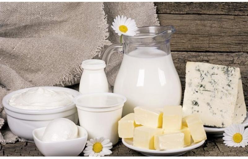 «Фестиваль молочных продуктов» пройдет в Ульяновске